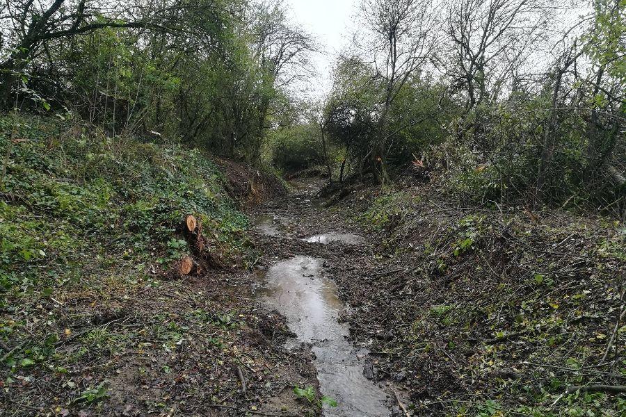 Mécleuves : traitement de la végétation du ruisseau de Champel